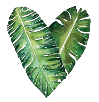 heart made of green leaves