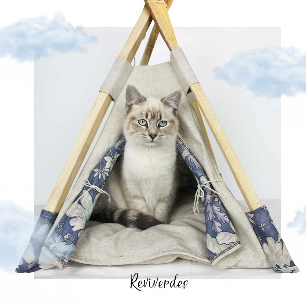 Wooden cat teepee