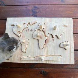 Wooden World Map Game